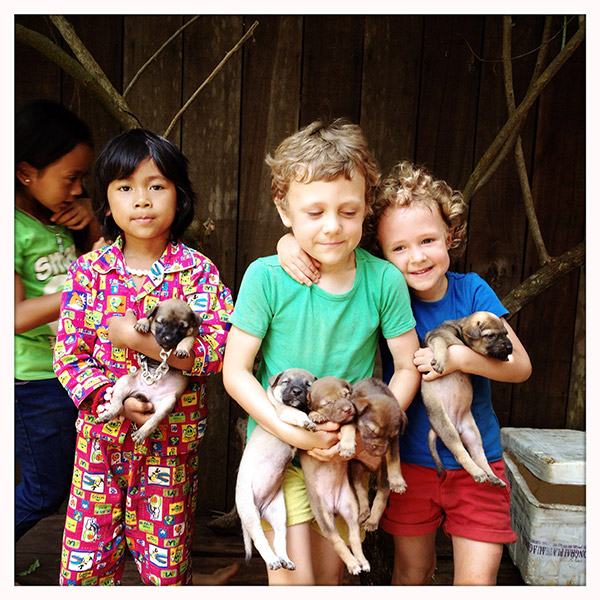 We reizen ondertussen al 6 weken van de ene verbijsterende plek naar de andere, verkenden vleermuisgrotten, zwommen in rivieren en namen een douche onder watervallen. En wat is de voltreffer van de reis tot nog toe? De 6 pups van de hond van Café Phka. Een gouden tip voor de thuisblijvers dus!