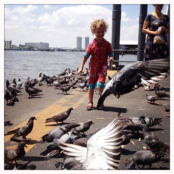 Lena roept het uit nadat ze met een handvol brood de kolonie duiven in beweging zet.